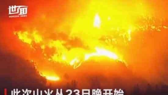 美国加州大火 美国加州大火 加州州长纽森宣布全州进入紧急状态